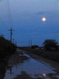 film-noir-ed-harris-madeleine-stowe-china-moon-1994-moon-twilight-casa-grande-arizona-2004-david-lee-guss