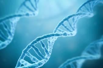 170227-human-genome-mn-1020_f82c32363fe6f7894de210243d8cae67.nbcnews-ux-2880-1000