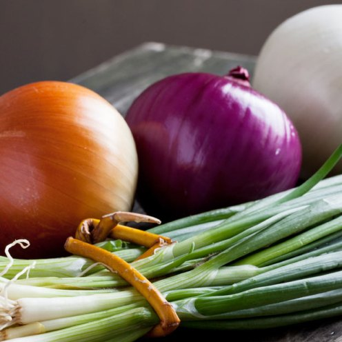 Onions_Prebiotics