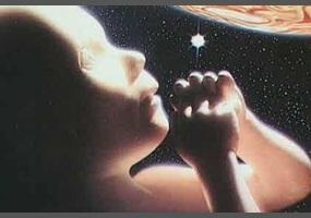 ea3d0acf8390f1de897a1936897f-what-is-the-reason-for-our-existence